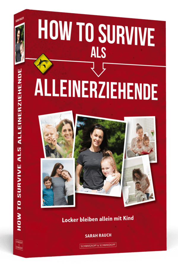 HOW TO SURVIVE ALS ALLEINERZIEHENDE